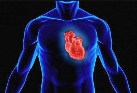 Отделение кардиохирургии в больнице Ихилов